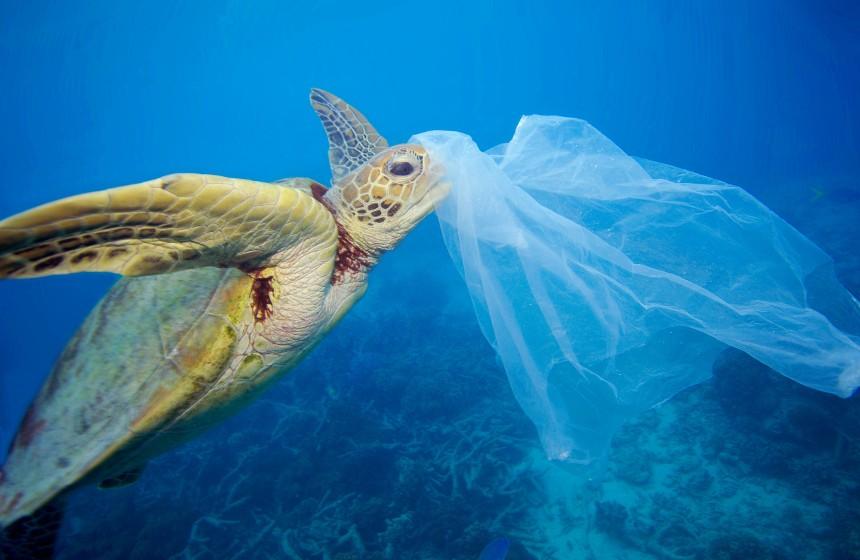 plastica in mare1